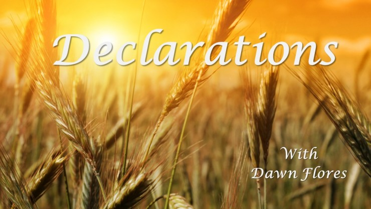 Harvest 1-8-18